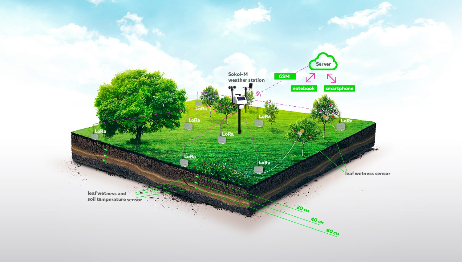 Sokol-M weather station for solving agricultural problems